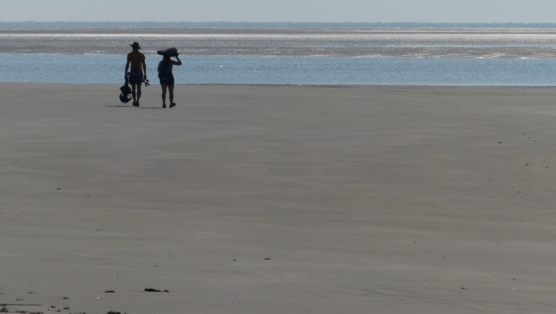 Homo sapiens students headed out to gather data on shorebirds.