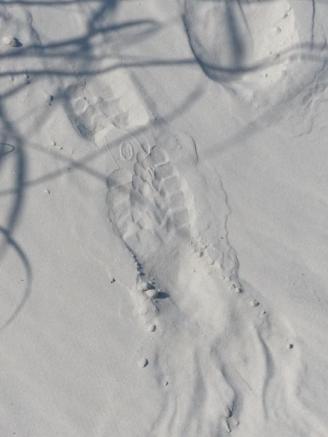 2015-06-16 sand tracks 009