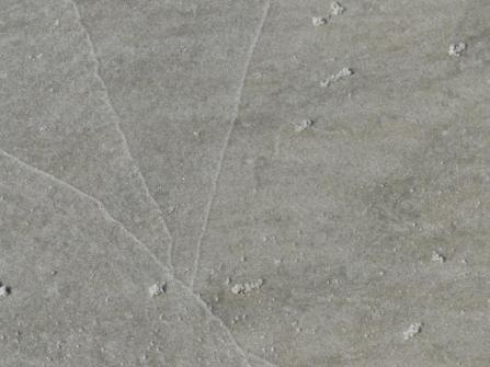 2015-06-16 sand tracks 029