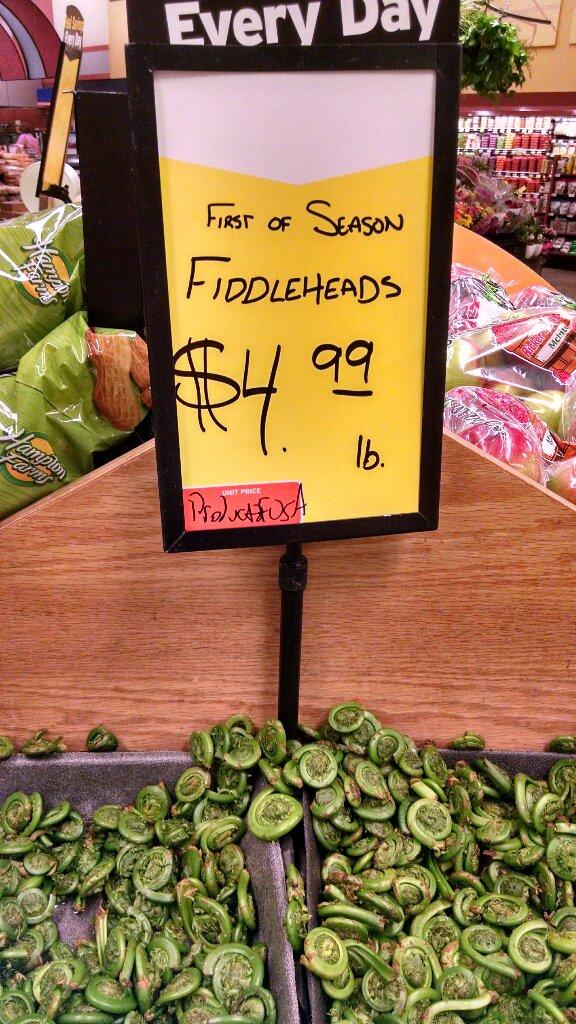 fiddleheadsHana