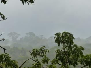 after-rain-copy