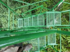 descending-rungs-of-access-ladder-copy