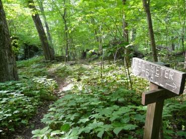 p-trail