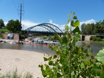 2014-08-06-cottonwood-at-confluence-park-3