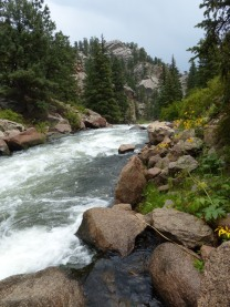 2014-08-07-eleven-mile-canyon