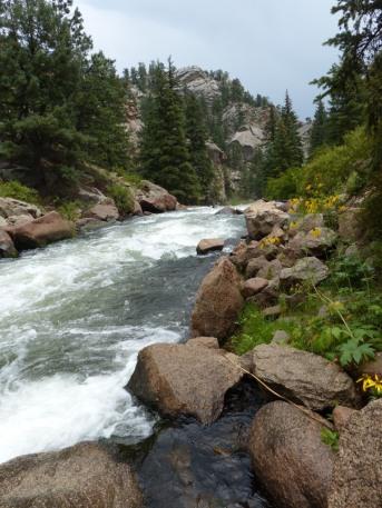 2014-08-07-eleven-mile-canyon