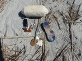 artifacts-on-beach