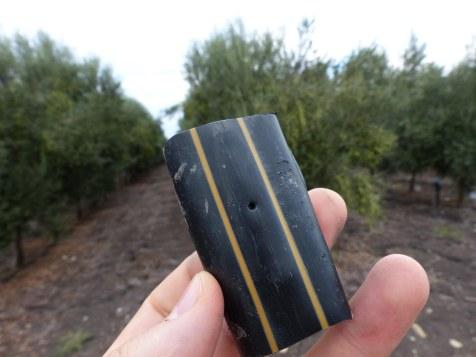 drip-irrigation-near-tel-megiddo-3