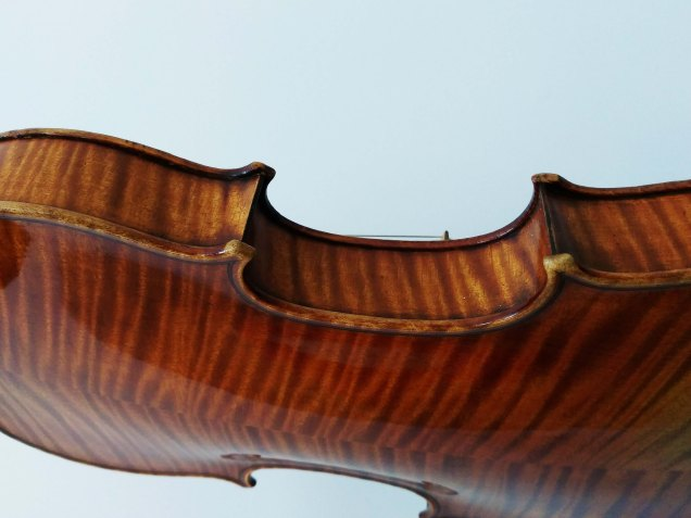 Maple back and sides of a 19th century Vuillaume violin