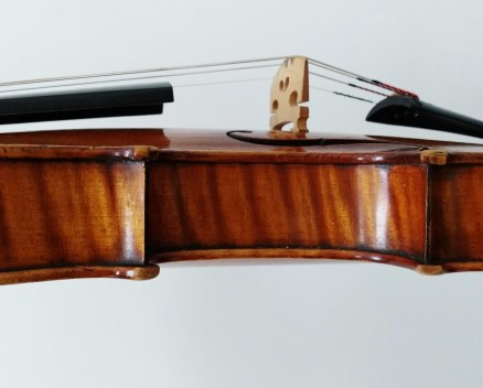 Maple sides of a 19th century Vuillaume violin
