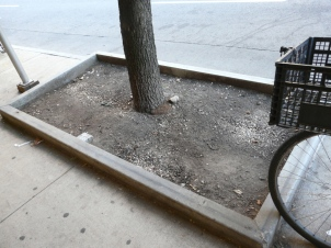 tree-guard-example-1