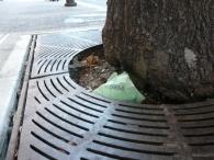 tree-guard-example-2