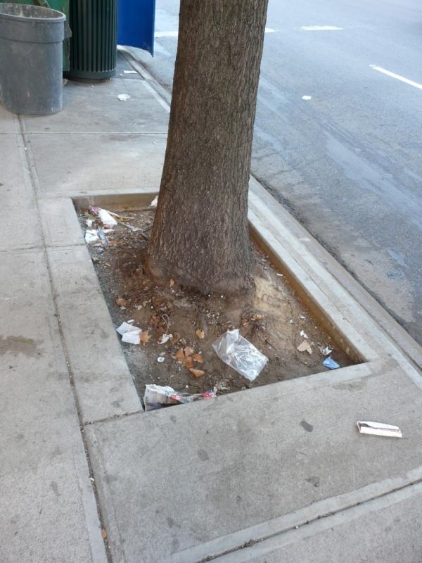 tree-guard-example-3