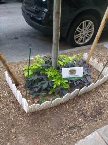 tree-guard-example-9