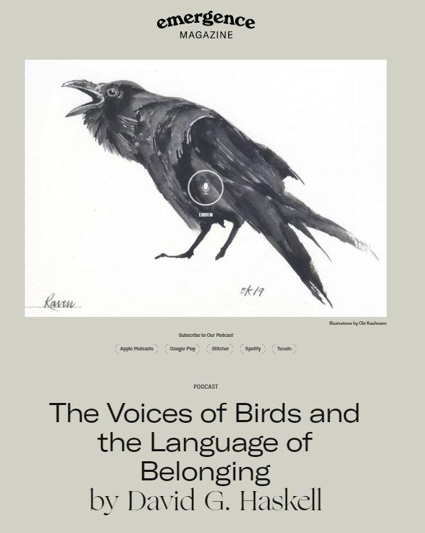 EM bird image